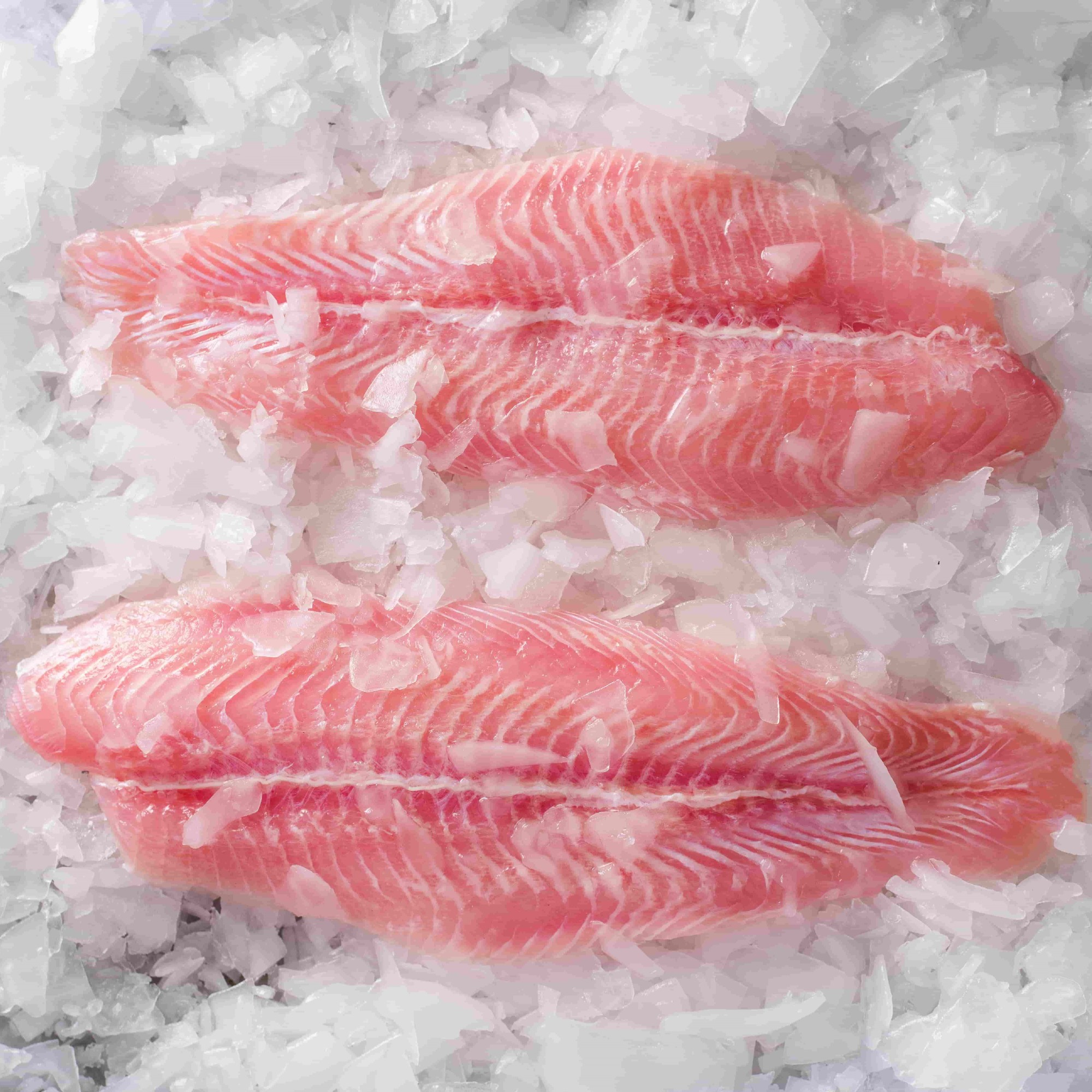CO Treated Fillets