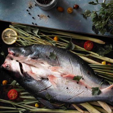 Cá Nguyên Con Xẻ Bướm Lưng